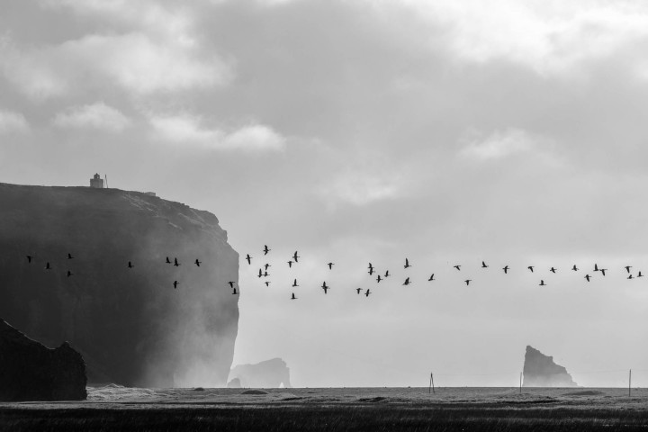 Reynisfjara Beach, Iceland #15 | Kai-Uwe Klauss Landscape Photography