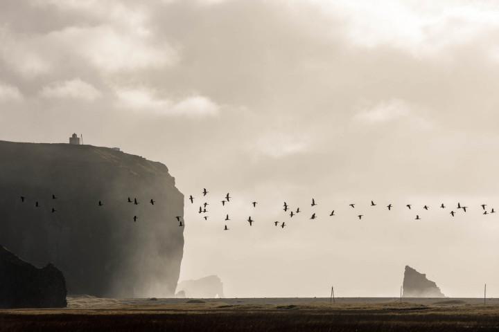 Reynisfjara Beach, Iceland #16 | Kai-Uwe Klauss Landscape Photography
