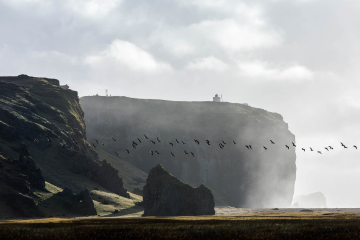 Reynisfjara Beach, Iceland #5 | Kai-Uwe Klauss Landscape Photography