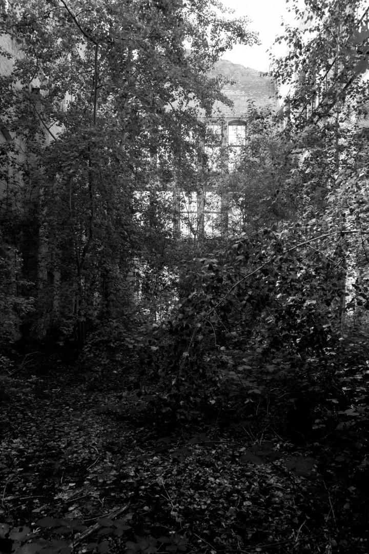 Heeresbäckerei, Olbricht-Kaserne Leipzig #28 | Kai-Uwe Klauss Foto
