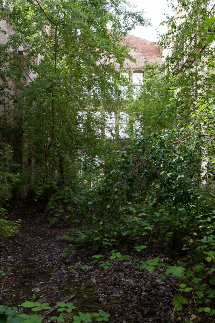 Heeresbäckerei, Olbricht-Kaserne Leipzig #27   Kai-Uwe Klauss Foto